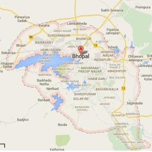 Jib Cranes Manufacturer in Bhopal